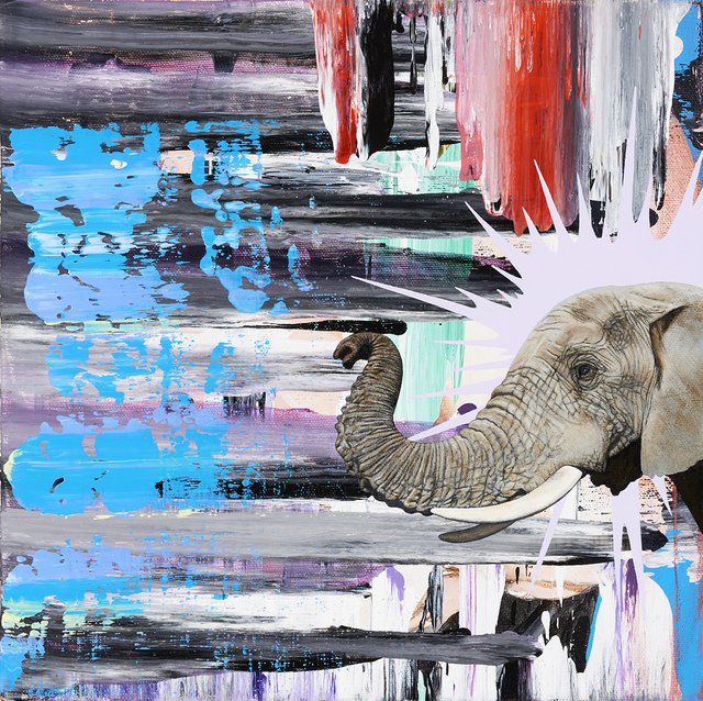 , 'African Elephant,' 2015, Catharine Clark Gallery
