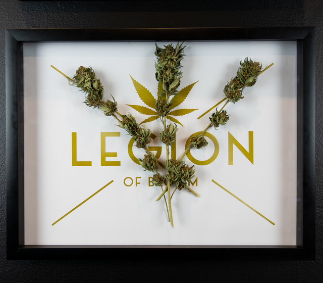 The LEGION of Bloom, 'Mango Saphire OG (Outdoor)', 2018, Mixed Media, Cannabis and Print, EWKUKS