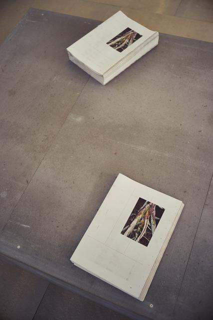 Tobias Zielony, 'The Citizen (Installation view)', 2015, 56th Venice Biennale