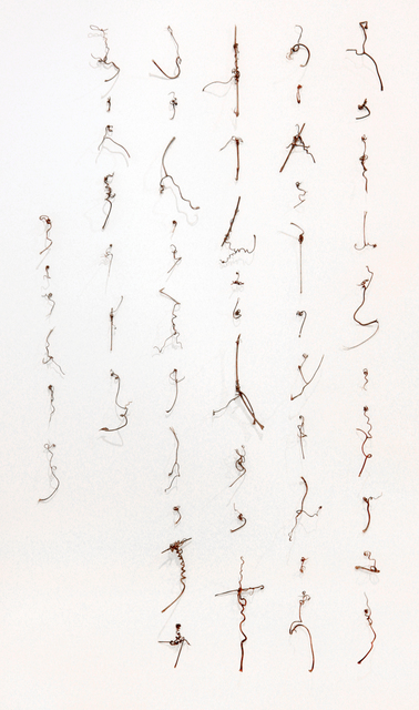 , 'Manuscript of Nature V_004,' 2012, Chambers Fine Art