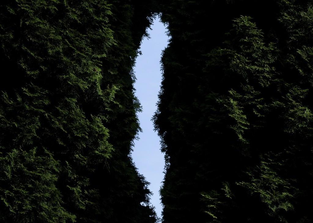 Udsigt / View