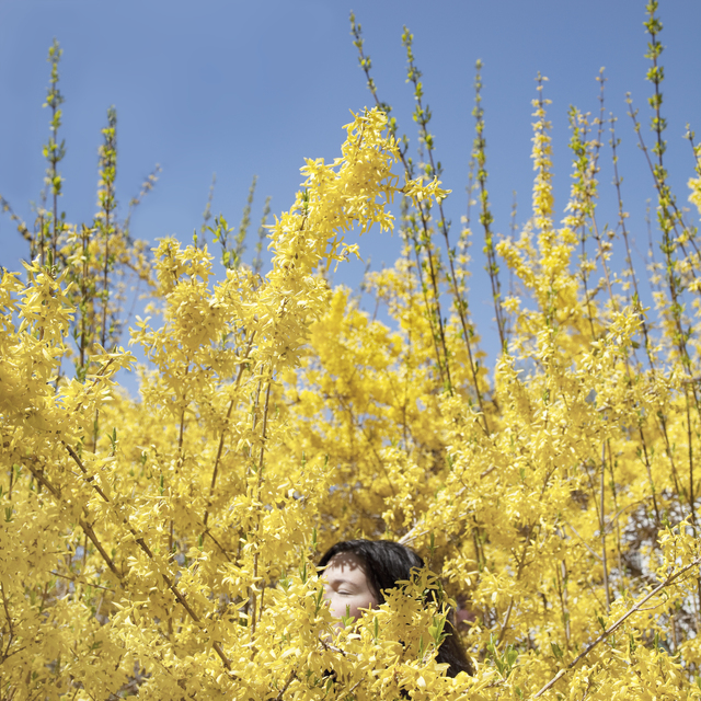 , 'Claire in the Forsythia,' 2010, Huxley-Parlour
