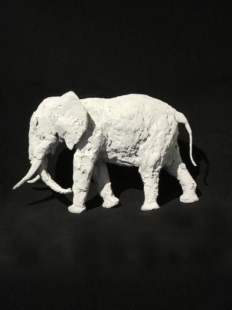 , 'Tusker,' , Diehl Gallery