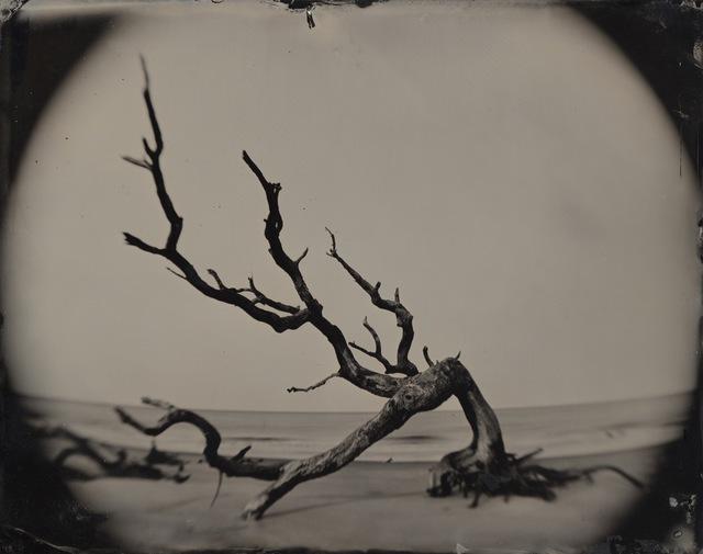 , '05.02.21 #8 Bent Tree / Jekyll Island,' 2005, Black Box Projects