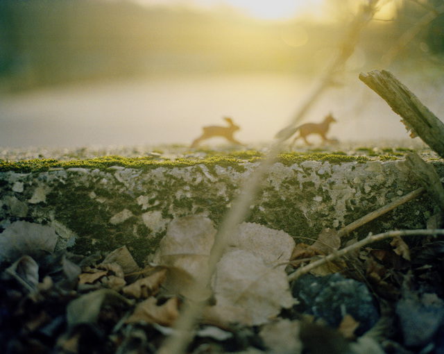 , 'Rabbit Chasing Fox,' 2006, InLiquid