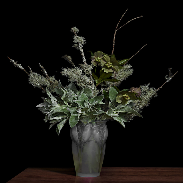 , 'Lamb's Ear and Lichens on Pine Branches in a Lalique Glass Vase,' 2018, Galerie de Bellefeuille