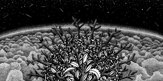 , 'Funky Fungus,' 2018, BERG Contemporary