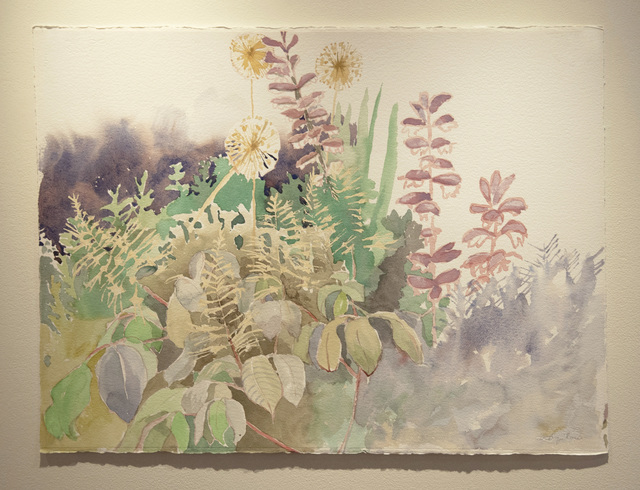 , 'Early Show – Alyssum & Acanthus,' 2017, Main Street Arts