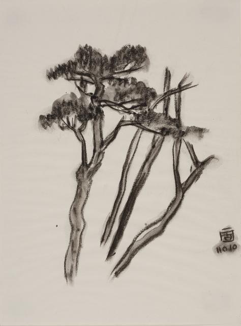, '庚子坪的樹,' 2010, Double Square Gallery
