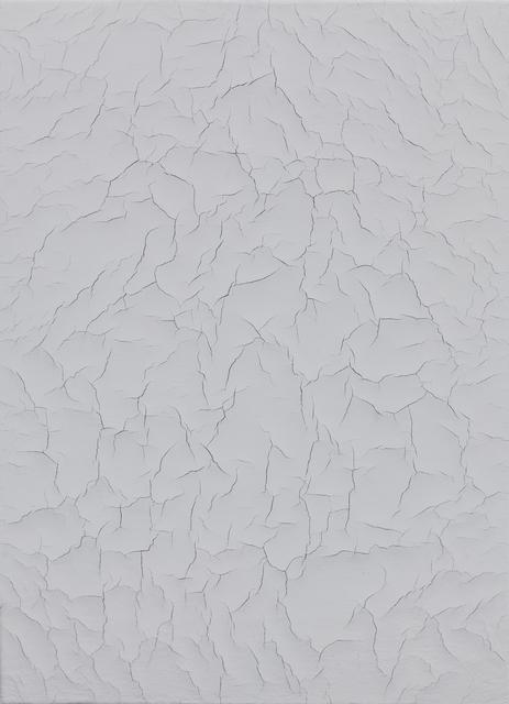 , 'Last impressions,' 2009, Galería Heinrich Ehrhardt