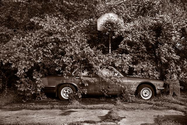 Gary Beeber, 'Abandoned Jaguar', 2018, UPA Gallery