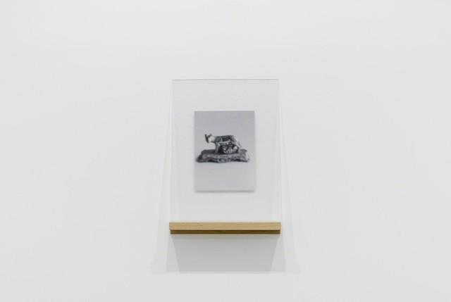 , 'Dispositivo per non vedere bene - Lupa #1, Bologna,' 2017, MATÈRIA