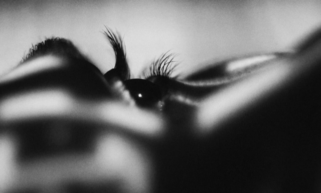 , 'Naked Eye,' 2017, Zemack Contemporary Art