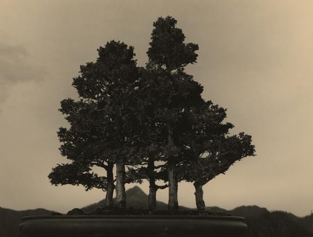 Yamamoto Masao, '#4015', Mizuma Art Gallery