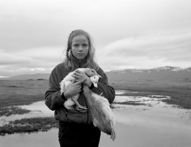 Agnieszka Sosnowska, 'Arney's Pets', 2013, Photography, PHOTO IS:RAEL