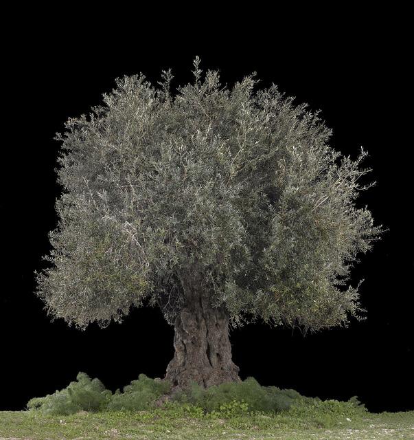 , 'Beit Jimal, Black,' 2017, Rosenfeld Gallery