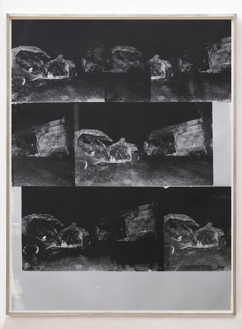, 'Dinosaur Transit Disaster Silver,' 2018, Alex Daniels - Reflex Amsterdam