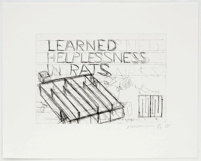 Bruce Nauman, 'Learned Helplessness In Rats', 1988, Brooke Alexander, Inc.