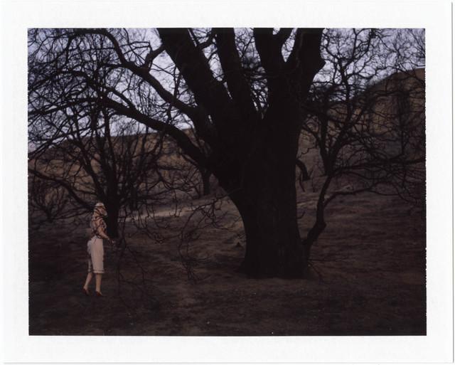 , 'Untitled,' , David Zwirner