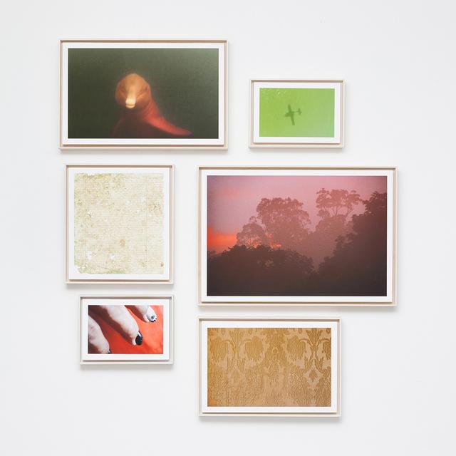 , 'Fordlandia 2,' 2015, Carbono Galeria