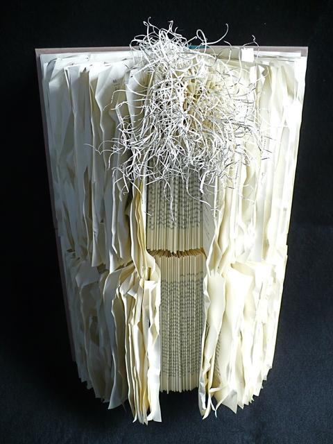 , 'books87Bridges,' 2010, Carter Burden Gallery