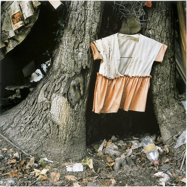 Elijah Gowin, 'Child's Dress in Tree Trunk', 1997, Light Work