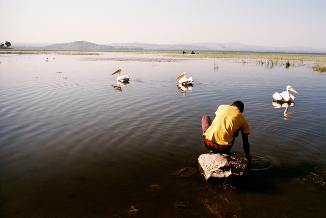 , 'Lake Awasa, Ethiopia,' 2015, Eclectica Galleries
