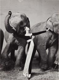 Dovima with Elephants, Evening dress by Dior, Cirque d'Hiver, Paris, August