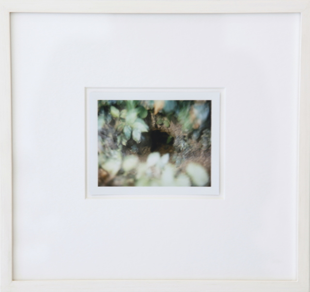 , 'Untitled (Lovell's Farm, Carroll County, MD, 6/19/99), 1999,' 1999, Nathalie Karg Gallery