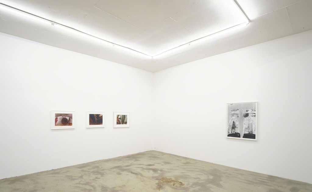 exhibition view 'The Human Apparatus', Jan Groover, Eileen Quinlan, Klemm's, Berlin 2015