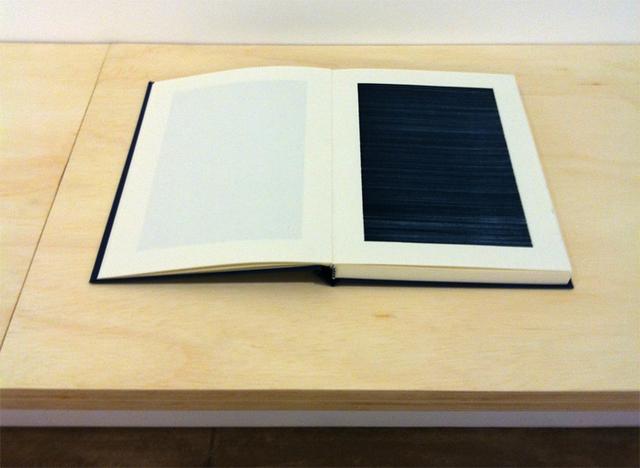 , '1 caneta,' 2013, Galeria Raquel Arnaud
