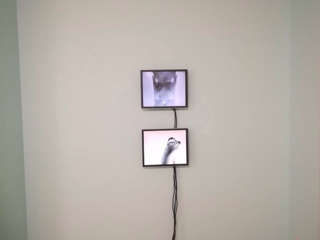 , 'Wounded Negative,' 2017, Galerie Nordenhake