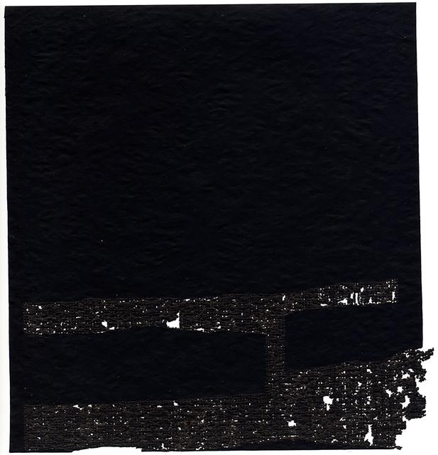 , 'fragmented rhizome,' 2005, Davis & Langdale Company, Inc.