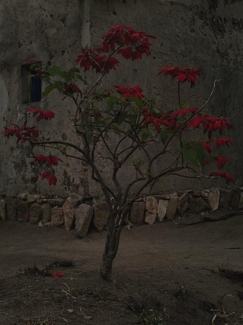 , 'Musambira 4,' 2014, Flatland Gallery
