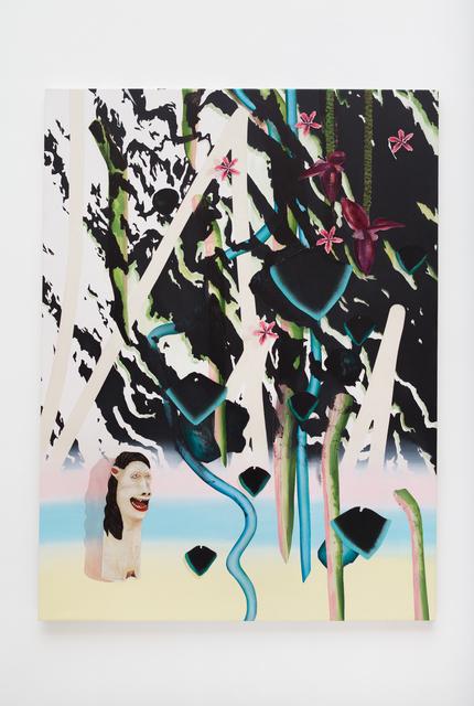 , 'Cachoeira flor de bananeira (Banana flower waterfall),' 2017, Zipper Galeria