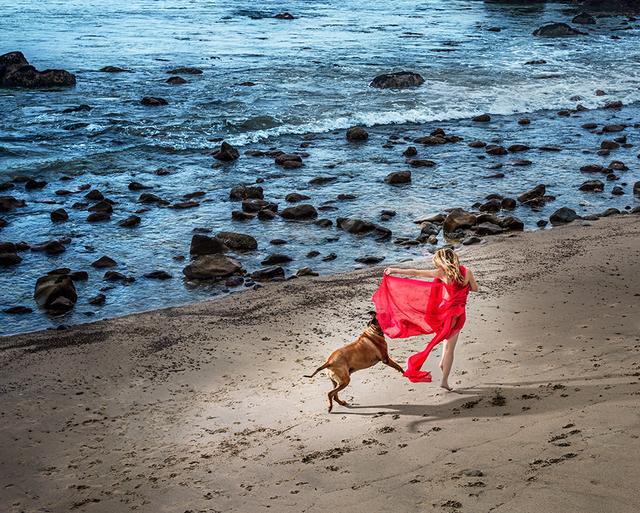 David Drebin, 'Beach Dog', 2018, CHROMA GALLERY