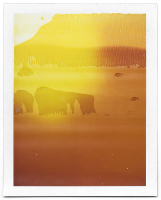 , 'Untitled (Landscape #27),' 2008-2014, Flowers