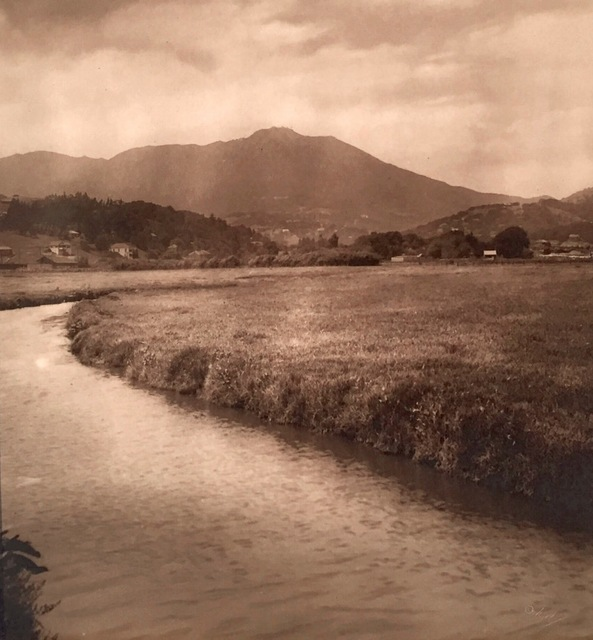 , 'Mt. Tamalpais,' 1910, de Young Museum