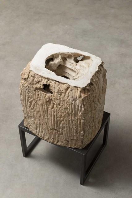 , 'Untitled, from Entre o Dentro e o Fora [Between Inside and Outside] series,' 2014, Galleria Raffaella Cortese