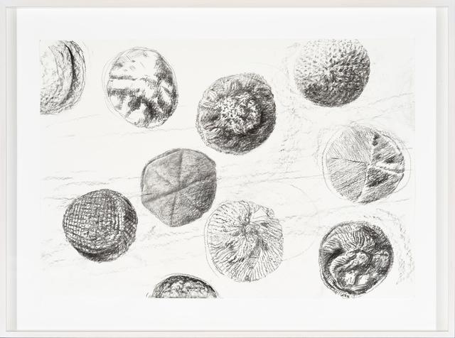 , 'Bioaesthetics III,' 2017, Temnikova & Kasela