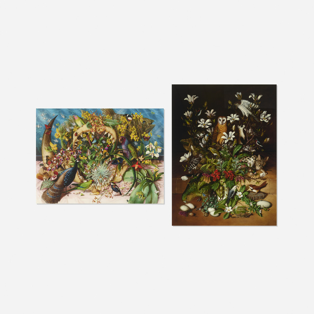 Isabella Kirkland, 'Collection and Back (two works from the Taxa portfolio)', 2002, Wright