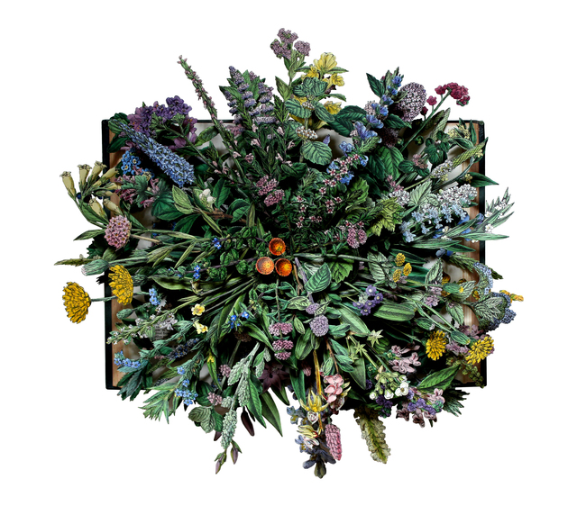 , 'WILD FLOWERS OF GREAT BRITAIN: volume X,' 2016, Heller Gallery