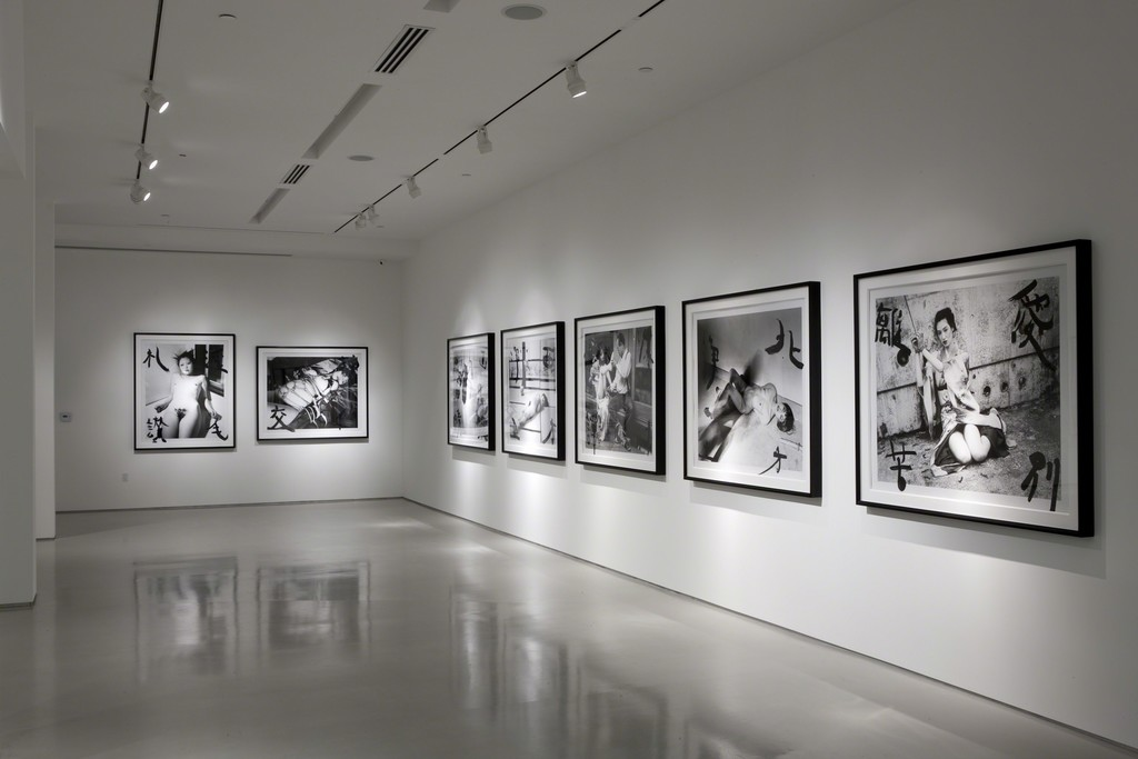 Araki: A Perspective, Installation View