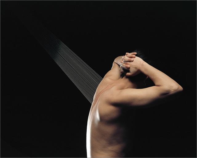 , ' Elegy  No.03,' 2013, TKG+