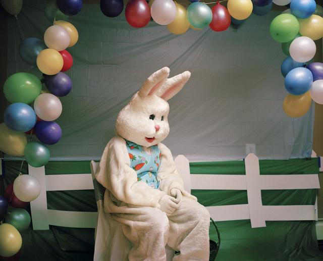 Maureen Drennan, 'Bunny', 2015, Kourosh Mahboubian Fine Art