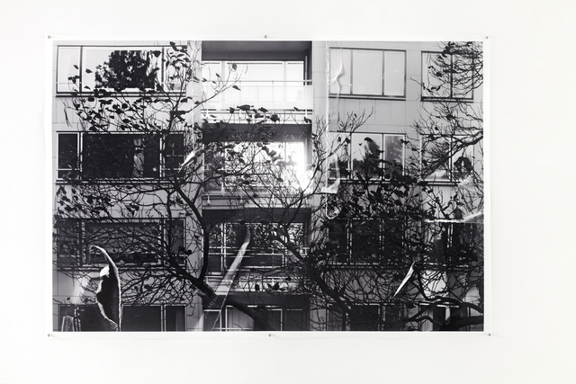 , 'Crumpels Series | Apartments, windows and a bare tree,' 2016, DAS ESSZIMMER