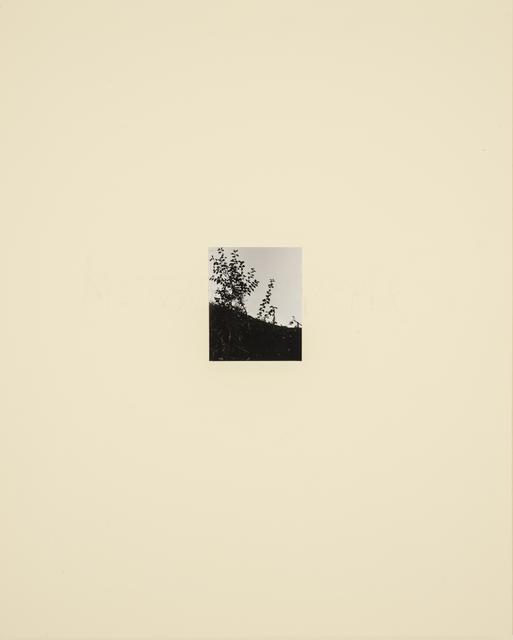 , 'Mothucker,' 1989, Casemore Kirkeby