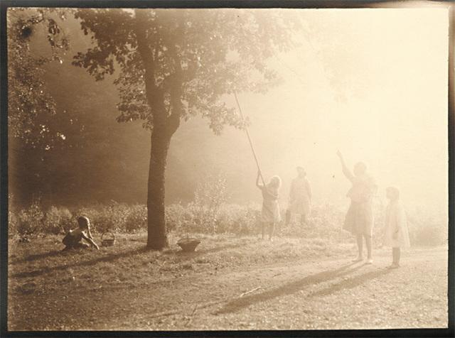 Léonard Misonne, 'Picking Fruit in the Sunlight', 1920s, Contemporary Works/Vintage Works