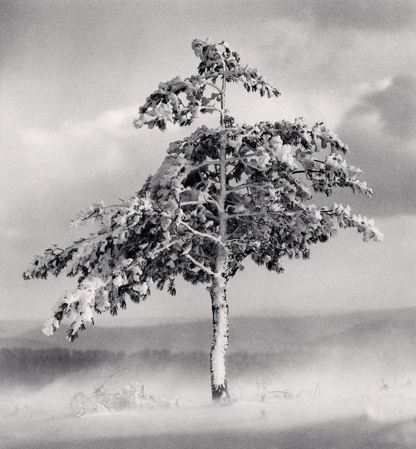 , 'Michael Kenna, Tree in Snowdrift, Yangcao Hill, Wuchang, Heilongjiang, China.,' 2011, Blue Lotus Gallery