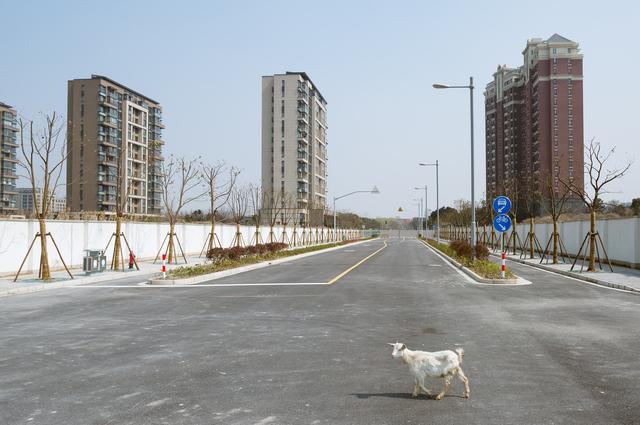 , 'Shanghai VIII,' 2016, Longmen Art Projects